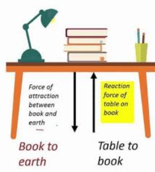 Newton's third law of motion examples